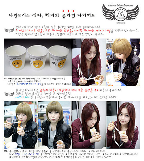 nine muses paper cup diet