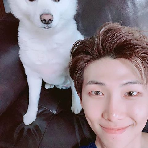 Let's Take a Look at BTS and Their Pets | Channel-K