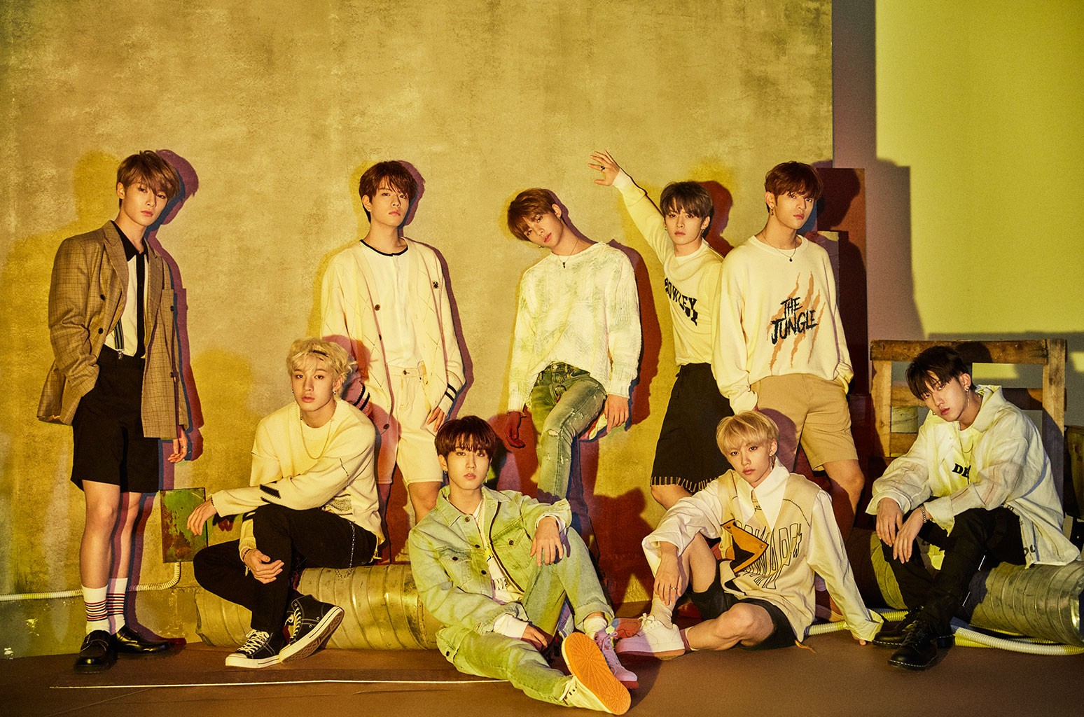 stray kids ideal type